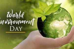 World environment day : पर्यावरण और बेपरवाह समाज